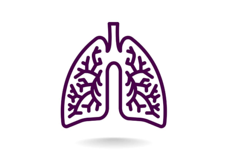免疫药物引领肺癌治疗划时代标杆